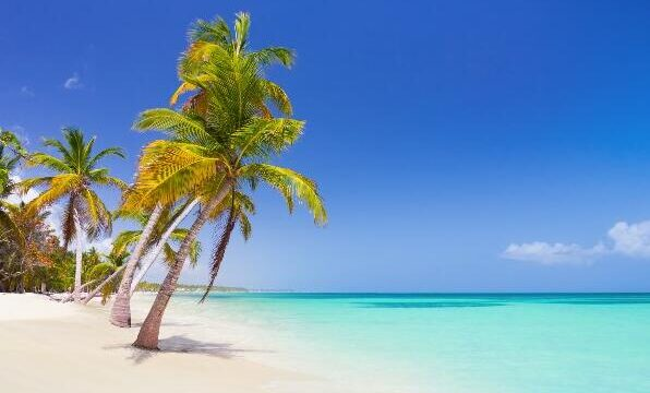 Best Travel Time for Punta Cana